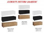 Elementy Systemu CALABRINI